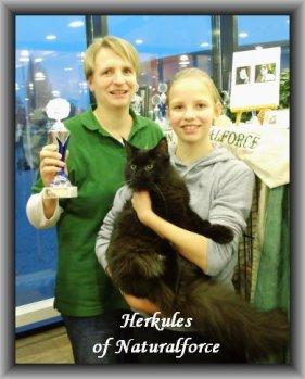 herkules_hp_news